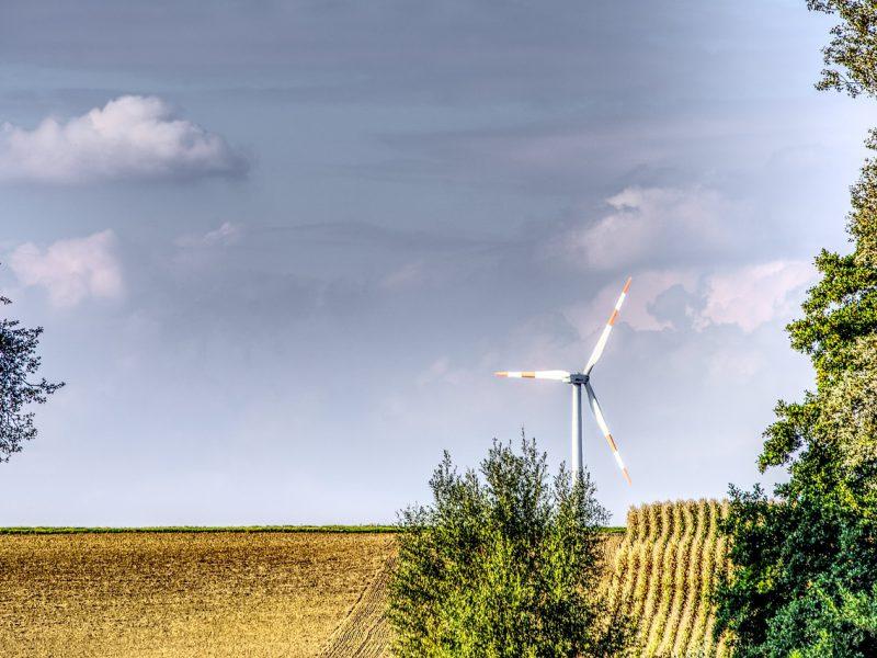 Rheinische Post: Grüne begrüßen CDU-Vorschläge für Klimaschutz und fordern mehr Schulden